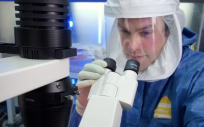 Bioprotección y biocontención: conceptos clave de la bioseguridad
